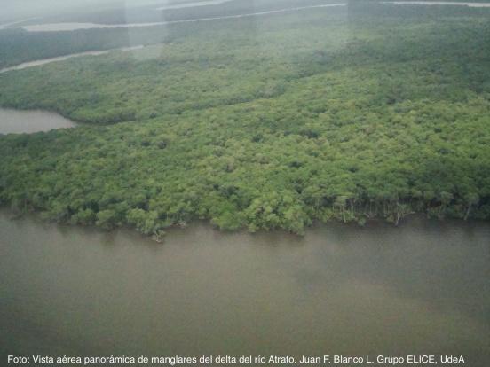 Rio Atrato, bahia Burrera